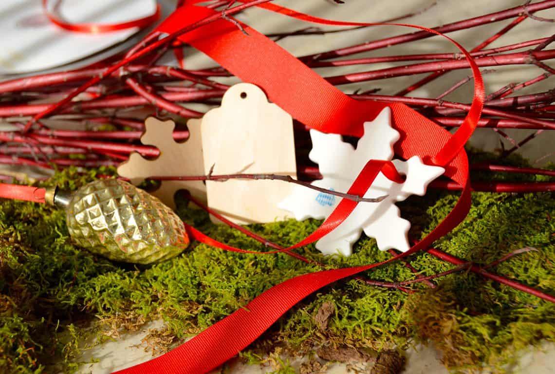 Holiday Amaryllis