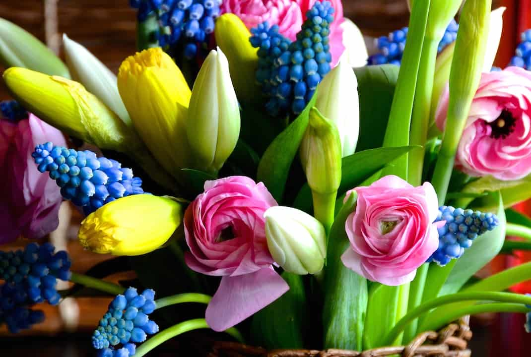 Arranging Spring Flowers