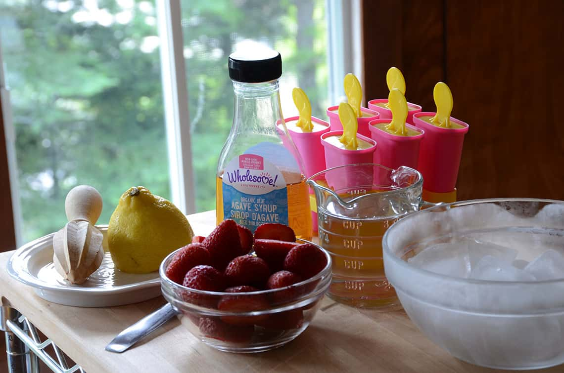 Ingredients for Strawberry Popsicles