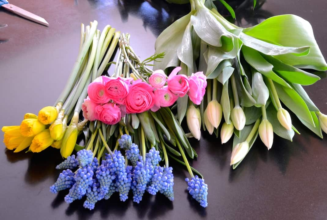 Arranging Spring Flowers