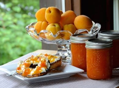 The Best Apricot Jam