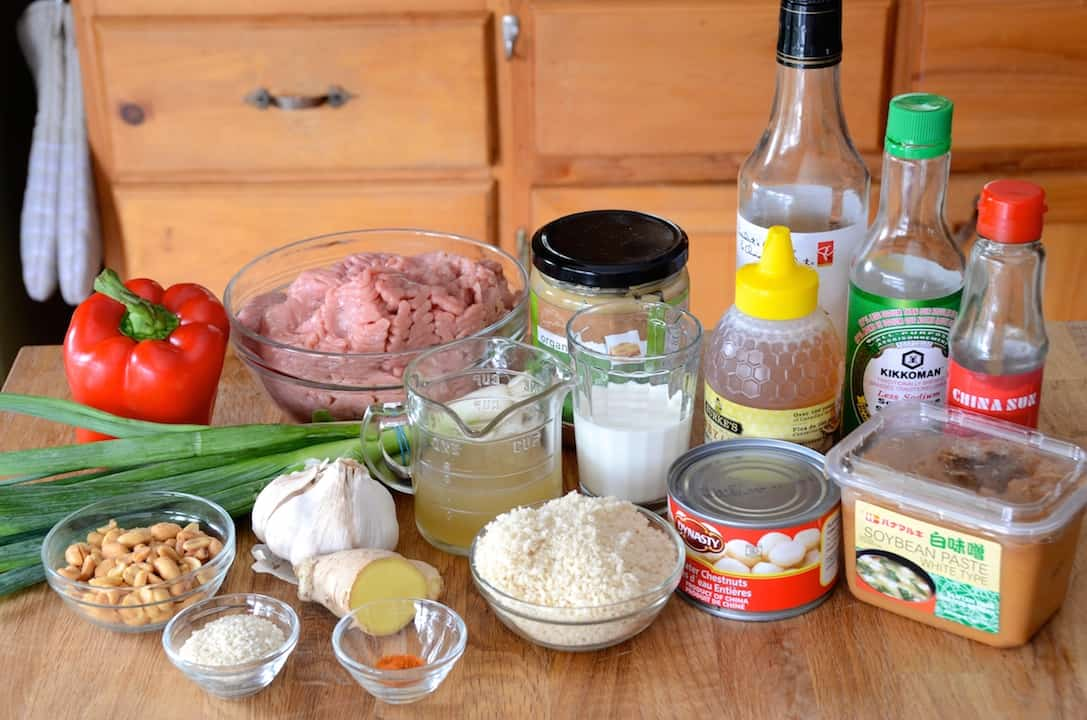 Ingredients for Asian Meatball Recipe