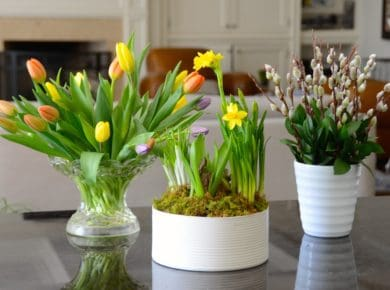 Arranging Spring Flowers Part Two