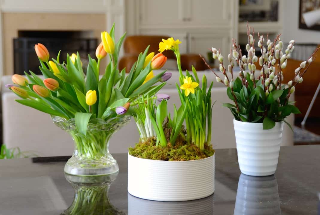 Arranging Spring Flowers – Part Two