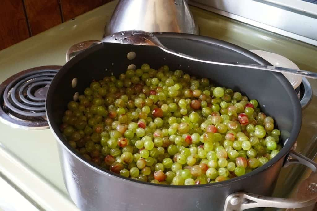 A wide, flat-bottomed pot to cook the gooseberries in