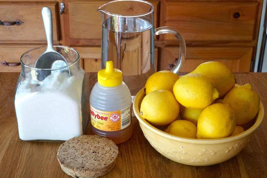 Ingredients for Grilled Lemonade