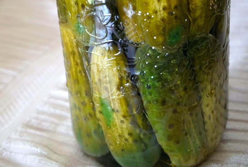 Jars stuffed with pickles, filled with brine