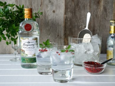 Tanqueray Malacca and Tonic