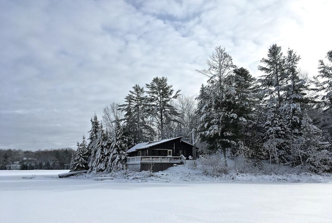 January 2020 Newsletter Frozen Cottage