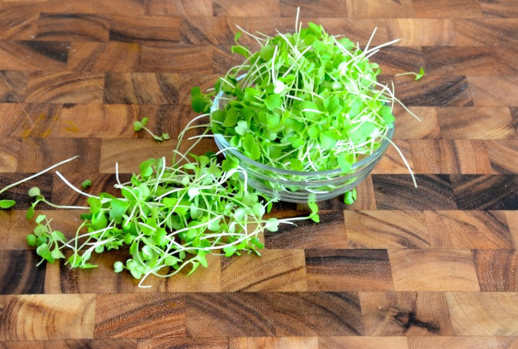 a bowl of freshly picked microgreens
