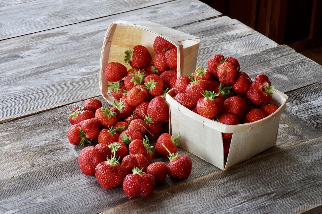 Freshly picky strawberries