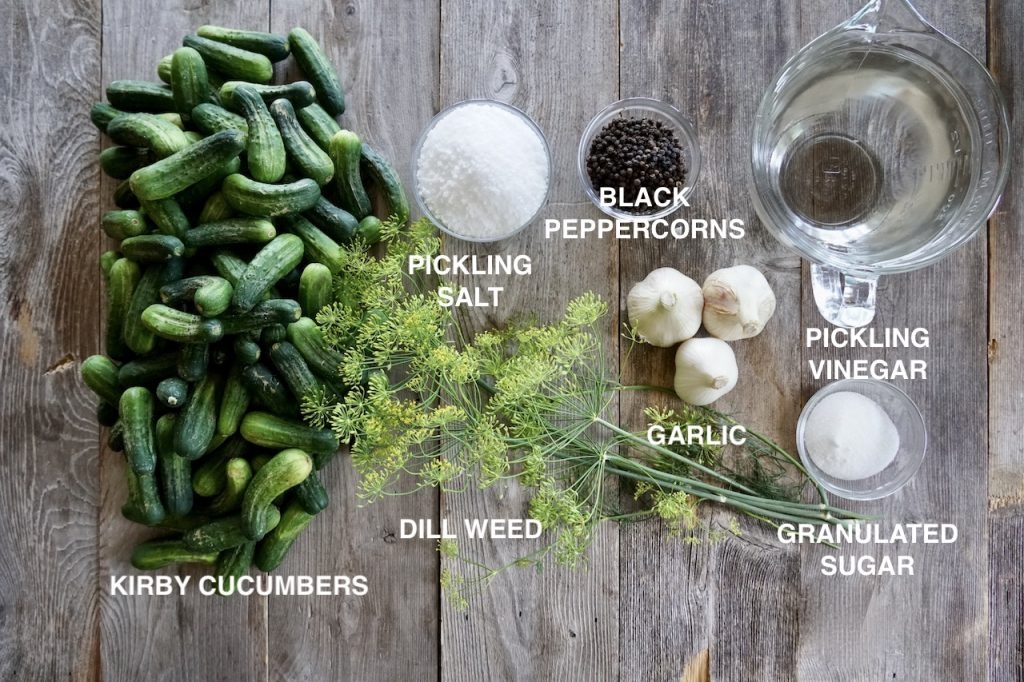 Ingredients for garlic dill pickles