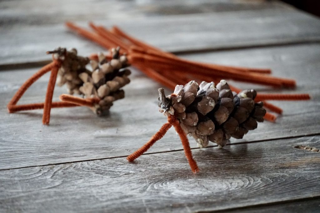 The pipe cleaners twisted around the bottom of the pine cones
