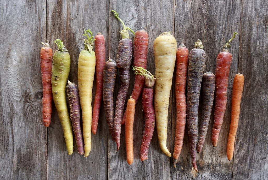 A rainbow of coloured heirloom carrots