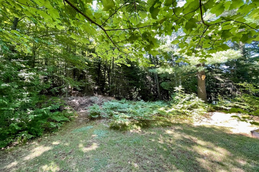 The area on the property where the storage shed will be built